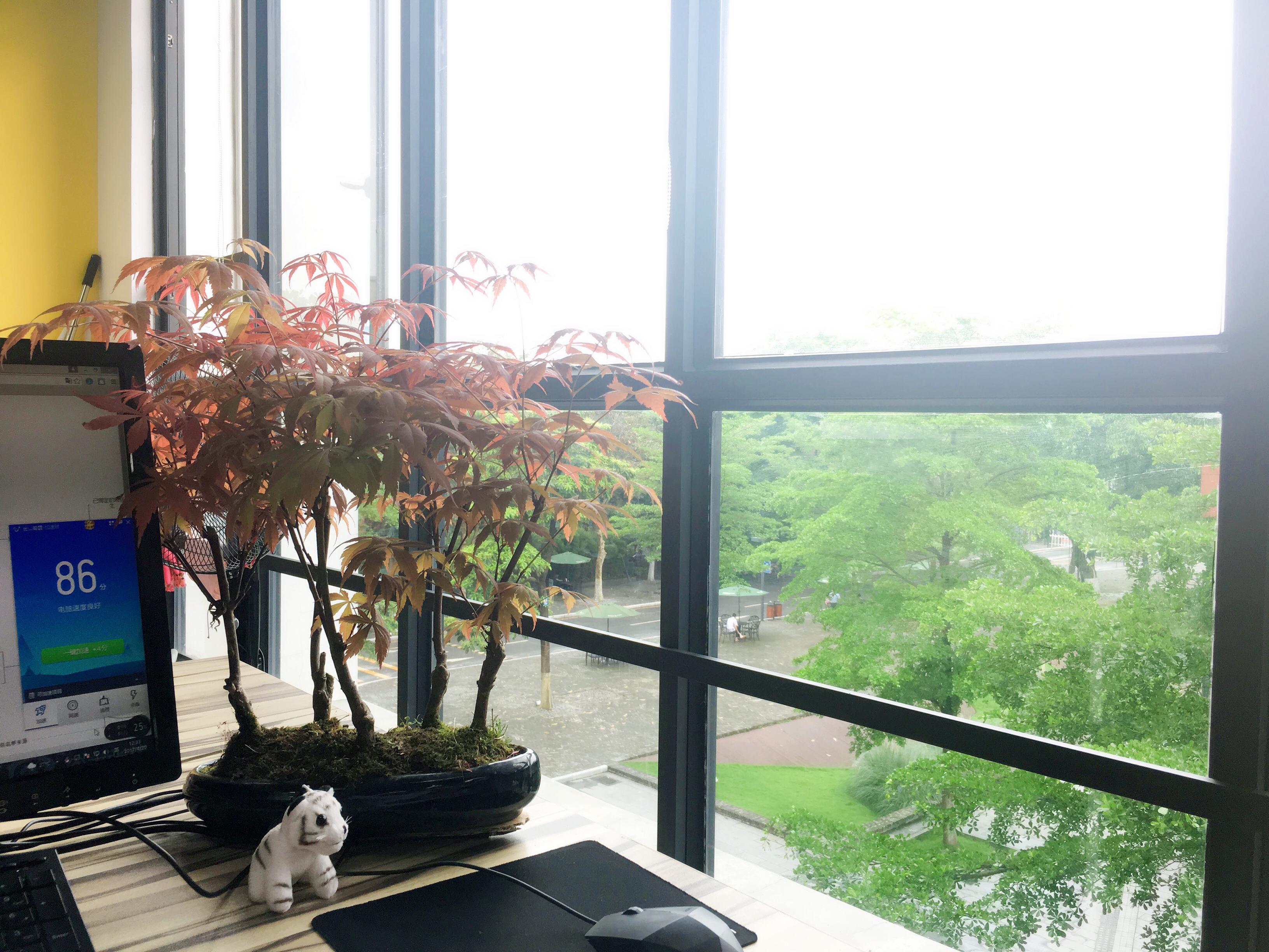 公司搬家啦,欢迎大家来访!-广州冠岳网络科技有限公司